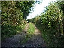 NY1137 : Bridleway to Gilcrux by Alexander P Kapp