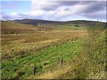 C7704 : Glenshane Pass by Kenneth  Allen
