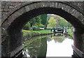 SJ9151 : Stockton Brook Top Lock and Bridge,  Caldon Canal, Staffordshire by Roger  Kidd