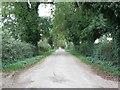 N8261 : The Black Road, Dunlough, Co. Meath by JP