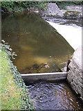 SN4562 : Weir on the Afon Aeron, Aberaeron by Humphrey Bolton