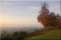 TQ2652 : Sunrise at Reigate Hill by Ian Capper