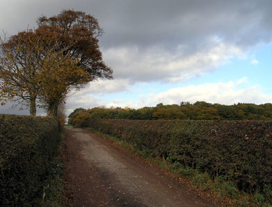 SK0028 : Path North from Chartley Hall by David Lally