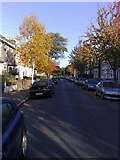 TQ4085 : Autumn in Lorne Road Forest Gate by Mike Richardson