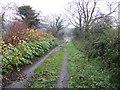SM9831 : Bridleway beyond Garn Deifog by Jonathan Billinger