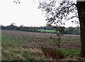 SO6489 : Farmland near Neenton, Shropshire by Roger  Kidd
