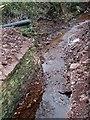 SO6587 : Winterburn Brook from Demolished Bridge, Shropshire by Roger  Kidd