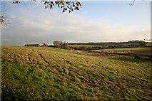 TF3579 : Burwell view by Richard Croft