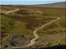 NY6739 : Track above Smittergill Burn by Andrew Smith