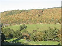 SO1506 : Sirhowy Valley near Tredegar by Robin Drayton