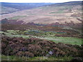 NY5752 : Old sheepfold on Cumrew Fell by David Brown