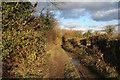 TF0733 : Greenfields Lane, Folkingham by Kate Jewell