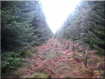 NX9263 : Fence and path at Little Hard Hill by Oliver Dixon