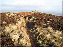 NX9563 : The summit of Knockendoch by Oliver Dixon