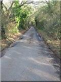 TR1958 : Looking NE along Swanton Lane as it passes through Oldridge Wood by Nick Smith