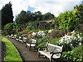 SJ4287 : Walled Garden Reynolds Park by Sue Adair