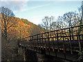 NN3109 : West Highland Railway by wfmillar