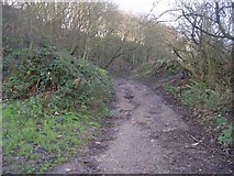 SE2433 : Footpath from Wood Lane up Post Hill by Betty Longbottom