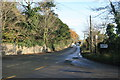O2249 : Country road looking east towards Donabate, near Newbridge Demesne, Donabate, Co. Dublin. by Colm O hAonghusa