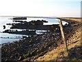 TQ8969 : Decaying Wooden Wrecks in Bedlams Bottom by Richard Dorrell