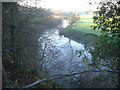 SO7953 : River Teme near Bransford by Trevor Rickard