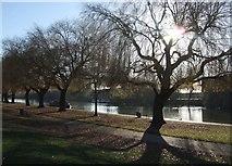 TL1998 : River Nene, Peterborough by Derek Harper