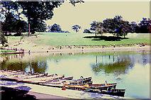 SE3337 : Roundhay Park lake by Chris Coleman