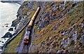 O2816 : Railway near Bray Head by Albert Bridge