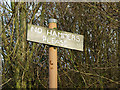 SO9391 : No Hammers Please, Dudley, Worcestershire by Roger  Kidd