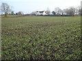 SO8144 : Footpath at Blackmore End by Trevor Rickard
