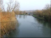 SP4408 : River Thames at Swinford Bridge by Jonathan Billinger