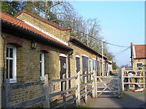 TQ1469 : Stockyard, Bushy Park by Colin Smith
