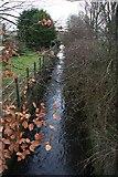 TL8467 : Mill Farm Lock, River Lark by Bob Jones