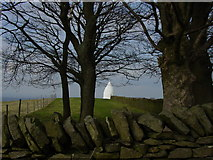 SJ9377 : The White Nancy Monument by Colin Park