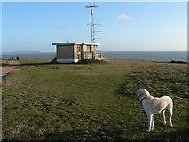 SZ1790 : Hengistbury Head: coastguard lookout by Chris Downer