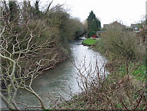 TR1558 : Great Stour at the rear of Willow Close by Nick Smith