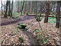 SK3252 : Footbridge and stream by John Poyser