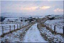 NZ5812 : Bridleway to Aireyholme Farm by Mick Garratt