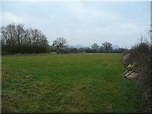 SJ3317 : Severn pastures by Jonathan Billinger