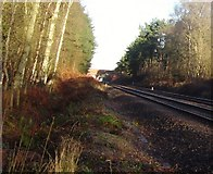 SU8262 : Railway line between Sandhurst and Crowthorne by Diane Sambrook