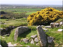 SW4028 : Carn Euny ancient village by Frances Watts