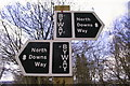 TQ5959 : North Downs Way Signpost by dennis smith