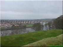 NT9953 : Royal Border Bridge, Berwick, taken from town Walls by Caley Sampson
