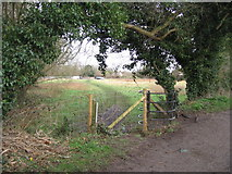 SU7251 : Footpath from Basingstoke Canal to nearest car park for Odiham Castle by Sandy B