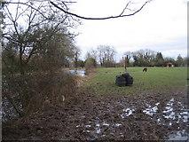 SU7251 : Muddy farmland by Sandy B