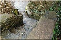 J4846 : Steps at the Quoile Pondage by Albert Bridge