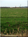 TG4502 : View across Chedgrave Marshes by Evelyn Simak