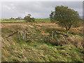 SN7065 : Old railway access crossing by Nigel Brown