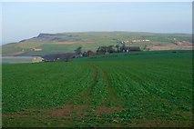 NZ6919 : Field Near Craggs Hall Farm by Mick Garratt