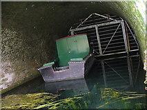 SU7151 : Greywell Tunnel, Eastern Portal by Colin Smith